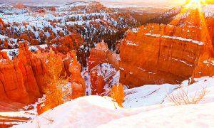 Winter Wonderland - Bryce Canyon National Park, Utah